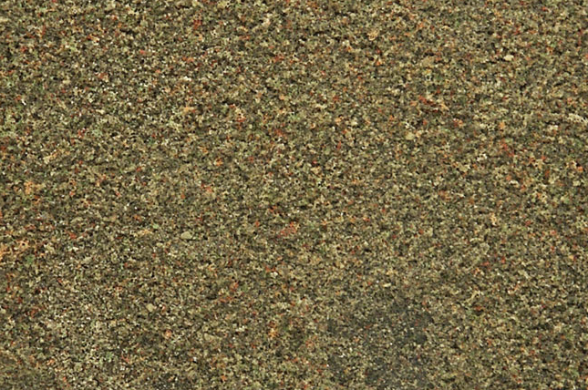 Woodland Scenics T1350 Blended Turf Earth Blend - Shaker